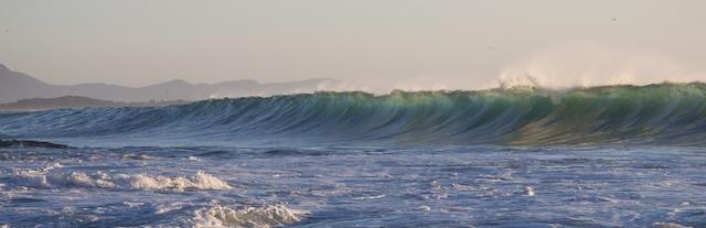 Illawarra Sept 10 75
