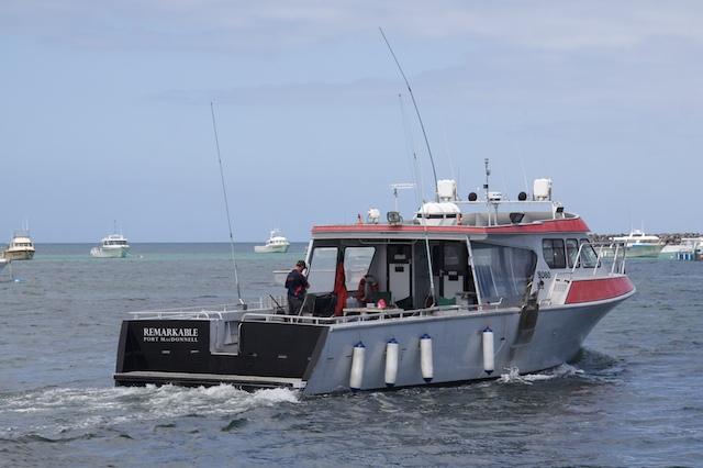 Port Mac Pelagic Jan 2011 183
